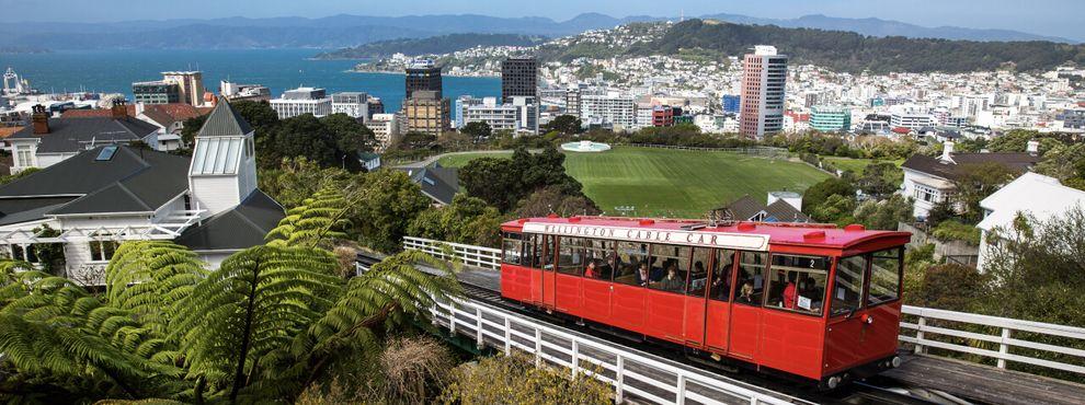 The international student handbook to Wellington, New Zealand
